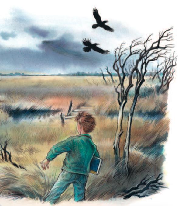 ein Knabe läuft durch ein windiges Moor